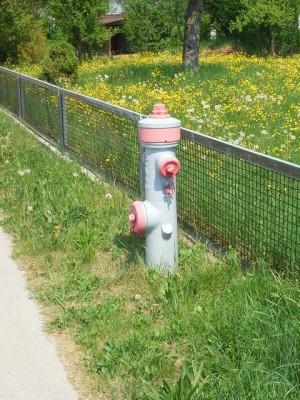 Bild eines Überflurhydranten